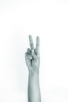Studio Na.hili, Hands 5 - VEGAN - PEACE (Germany, Europe)