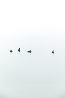 Studio Na.hili, Floating Between Fog and Sea (Germany, Europe)