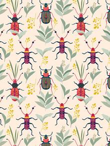 Uma Gokhale, Summer Bugs (India, Asia)