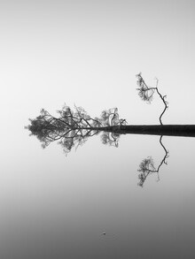 Holger Nimtz, Reflections on Water (Germany, Europe)