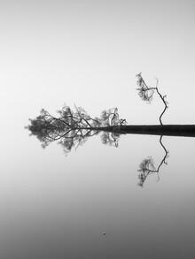 Holger Nimtz, Reflections on Water (Germany, Europe)
