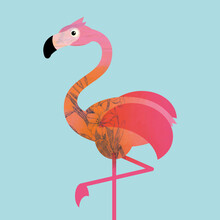 Pia Kolle, Kinderzimmer-Flamingo – Illustration für Kinder (Deutschland, Europa)