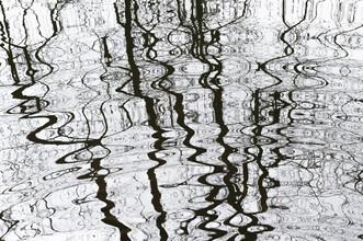Thomas Staubli, Wasserspiegelung (Schweiz, Europa)