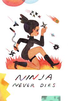 Rumi Hara, Ninja Never Dies (United States, North America)