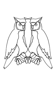 Julia Hariri, Owl Lines (Deutschland, Europa)