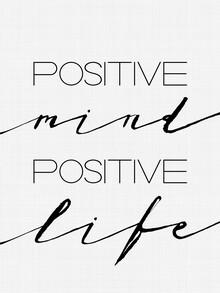 Vivid Atelier, Positive Mind Positive Life (Großbritannien, Europa)