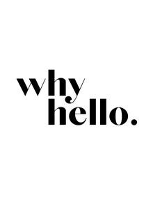 Vivid Atelier, Why Hello No3 (Großbritannien, Europa)