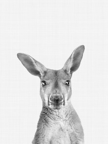 Vivid Atelier, Kangaroo (Black and White) (United Kingdom, Europe)
