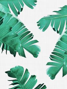 Vivid Atelier, Tropical Leaves (Großbritannien, Europa)