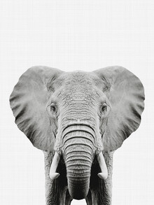 Vivid Atelier, Elephant (Black and White) (United Kingdom, Europe)