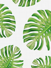 Vivid Atelier, Tropical Monstera (United Kingdom, Europe)