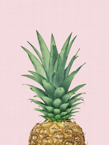 Vivid Atelier, Pineapple Pink (United Kingdom, Europe)