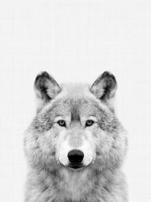 Vivid Atelier, Wolf (Black and White) (Großbritannien, Europa)