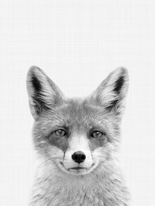 Vivid Atelier, Fox (Black and White) (United Kingdom, Europe)