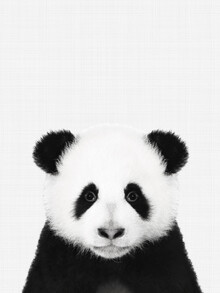 Vivid Atelier, Panda (Black and White) (United Kingdom, Europe)