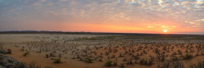Dennis Wehrmann, Sonnenuntergang Etoshapfanne (Namibia, Afrika)