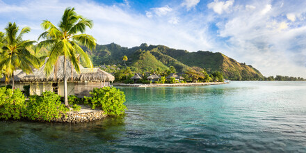 Jan Becke, Tropical island paradise on Moorea (French Polynesia, Oceania)