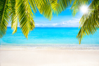 Jan Becke, Summer holiday at the beach (French Polynesia, Oceania)