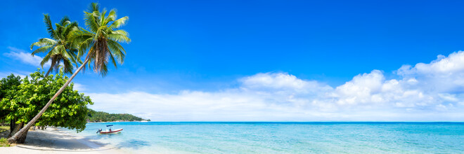 Jan Becke, Traumstrand auf Bora Bora mit Palmen und türkisblauem Wasser (Französisch-Polynesien, Australien und Ozeanien)