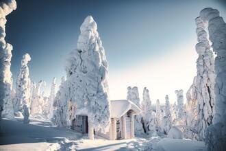 André Alexander, Winterwunderland (Finnland, Europa)