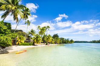 Jan Becke, Urlaub auf einer tropischen Insel in der Südsee (Französisch-Polynesien, Australien und Ozeanien)