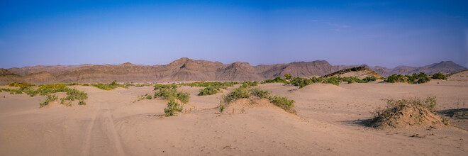 Dennis Wehrmann, Endless vastness of the Hoanib riverbed in the Kaokoveld in Namibia (Namibia, Africa)