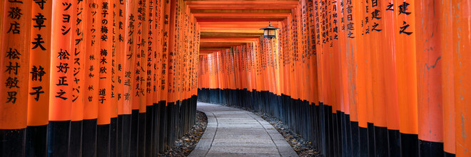 Jan Becke, Fushimi Inari Taisha in Kyoto (Japan, Asien)