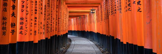 Jan Becke, Fushimi Inari Taisha in Kyoto (Japan, Asien)
