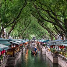 Jan Becke, Tongli water town (China, Asia)