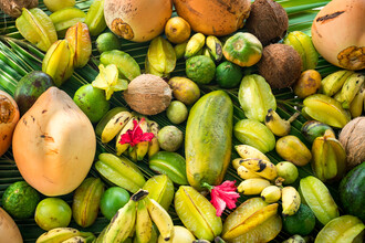 Jan Becke, Tropische Früchte (Malediven, Asien)