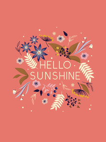 Ania Więcław, Hello Sunshine flowers and type (Poland, Europe)