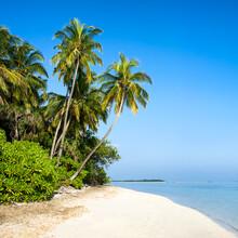 Jan Becke, Tropical island in the Maldives (Maldives, Asia)