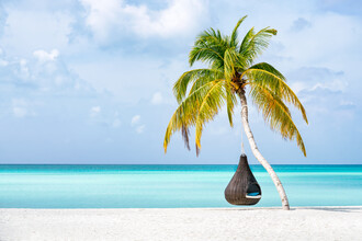 Jan Becke, Holiday on the beach (Maldives, Asia)