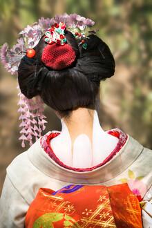 Jan Becke, Japanese maiko (Japan, Asia)