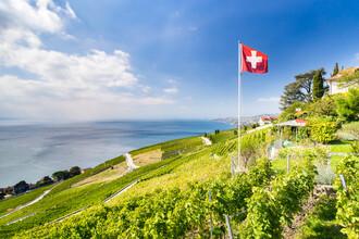 Jan Becke, Weinterrassen von Lavaux am Genfersee (Schweiz, Europa)