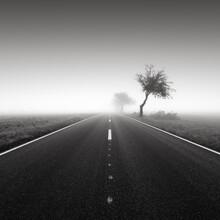 Thomas Wegner, Road to nowhere 5 (Deutschland, Europa)