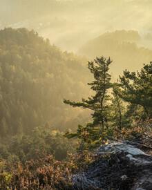 Ronny Behnert, Basteiaussicht im Nebel II Elbsandsteingebirge (Deutschland, Europa)