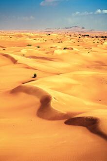 Jean Claude Castor, Wüste in Dubai (Vereinigte Arabische Emirate, Asien)