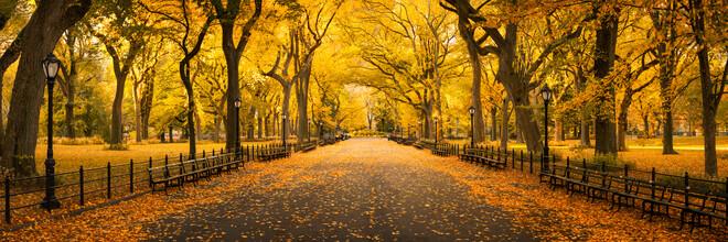 Jan Becke, Central Park in New York (Vereinigte Staaten, Nordamerika)