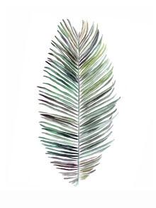 Christina Wolff, Mantika Botanical Coconut Leaf (New Zealand, Oceania)