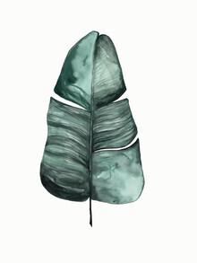 Christina Wolff, Mantika Botanical Banana Leaf (New Zealand, Oceania)