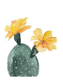 Christina Wolff, Mantika Botanical Kaktusblumen gelb (Neuseeland, Australien und Ozeanien)