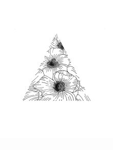 Christina Wolff, Mantike Blumen Dreieck (Neuseeland, Australien und Ozeanien)