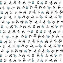 Balazs Solti, Panda pattern (Hungary, Europe)