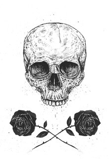 Balazs Solti, Skull N' Roses (Hungary, Europe)