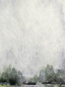 Dan Hobday, Misty Forest (United Kingdom, Europe)