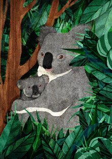 Katherine Blower, koala (Großbritannien, Europa)