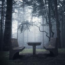 Sonja Lautner, Light in the Dark (Portugal, Europe)