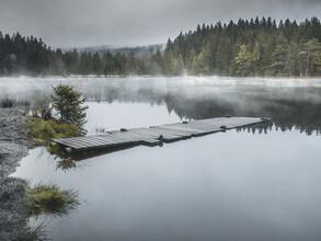 Sonja Lautner, Nebel am See (Deutschland, Europa)