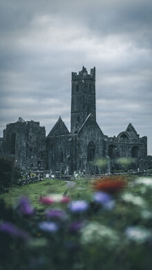 Sonja Lautner, The Abbey (Ireland, Europe)